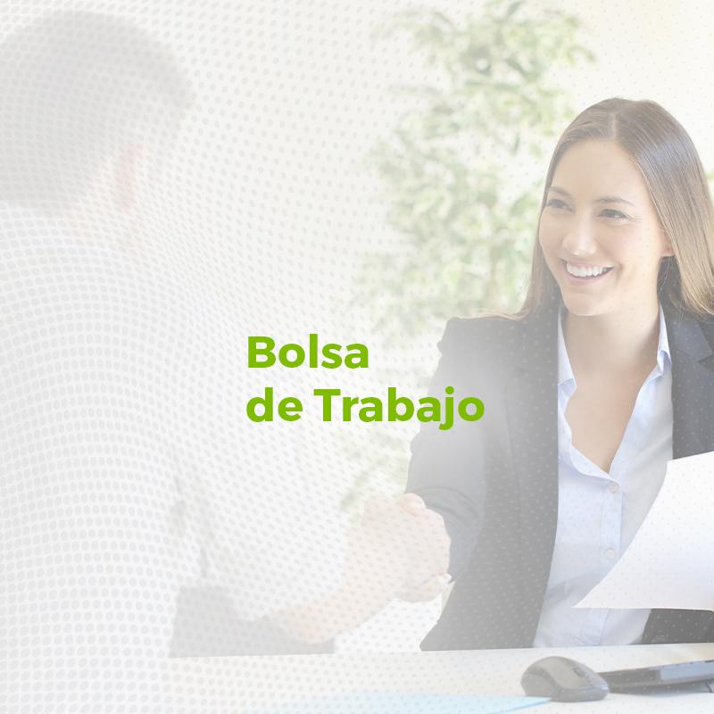 Bolsa_de_trabajo_Responsivo
